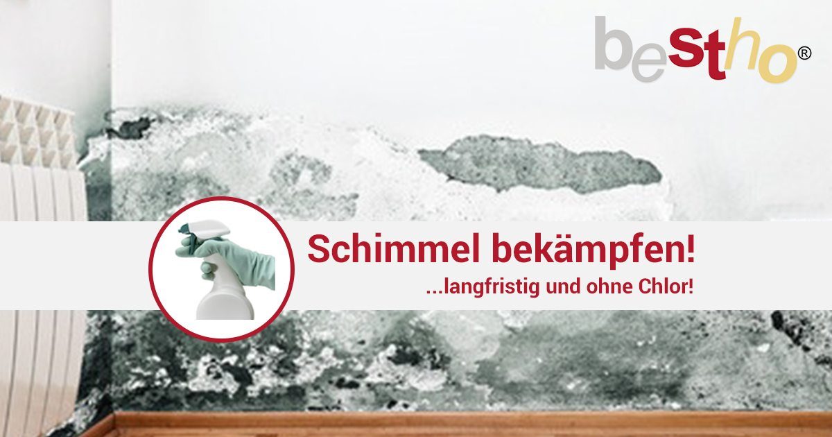 schimmel shock schimmel entfernen bestprotec bayern gmbh. Black Bedroom Furniture Sets. Home Design Ideas